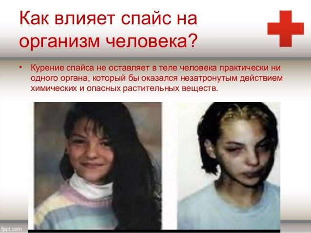 Влияет ли спайс на человека Трамал bot telegram Бийск