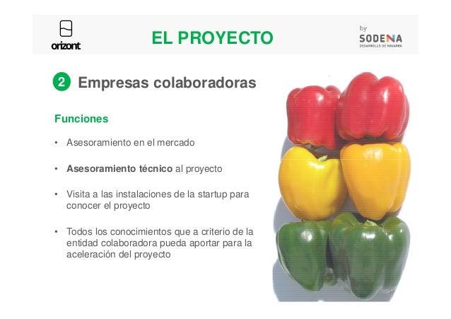 Funciones • Asesoramiento en el mercado 2 Empresas colaboradoras EL PROYECTO 15 • Asesoramiento técnico al proyecto • Visi...