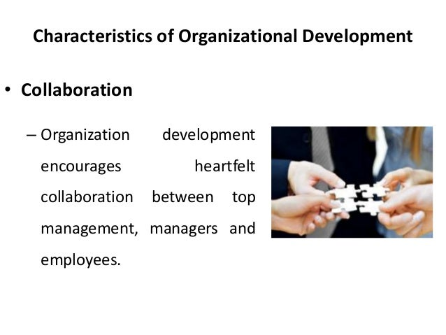 features of a pure bureaucratic organization Bureaucracy has to a large extent contributed immensely to the growth of modern organization and in its contributions lays some weaknesses that result from the application of its features in the following paragraphs.