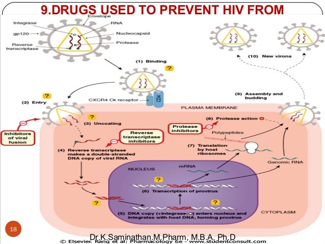 reaction about hiv in the philippines Rodrigo duterte took office as president of the philippines on  the growing hiv epidemic is driven by a legal and policy environment hostile to evidence-based.