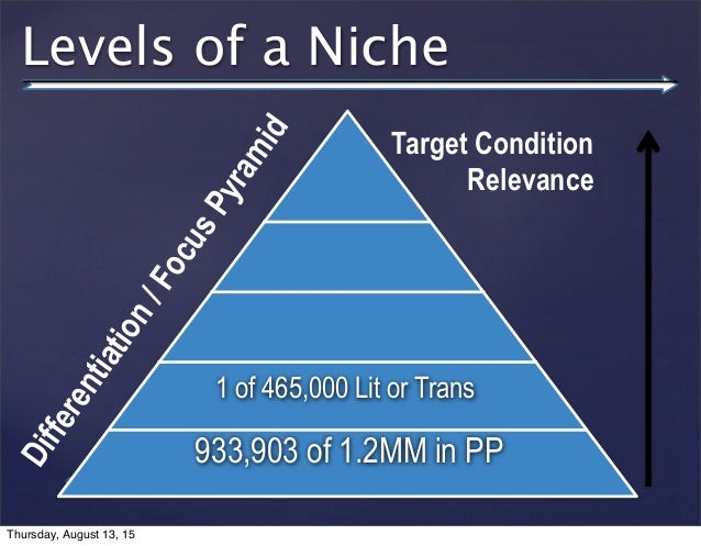 © 2013 SuccessTrack, LLC Levels of a Niche 933,903 of 1.2MM in PP 1 of 465,000 Lit or Trans Target Condition Relevance Dif...
