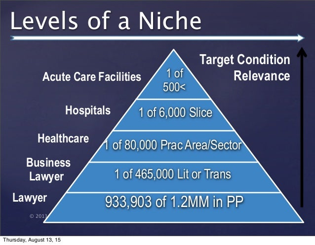 © 2013 SuccessTrack, LLC Levels of a Niche 933,903 of 1.2MM in PP 1 of 465,000 Lit or Trans 1 of 80,000 Prac Area/Sector 1...