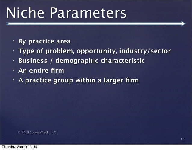 © 2013 SuccessTrack, LLC Niche Parameters • By practice area • Type of problem, opportunity, industry/sector • Business / ...