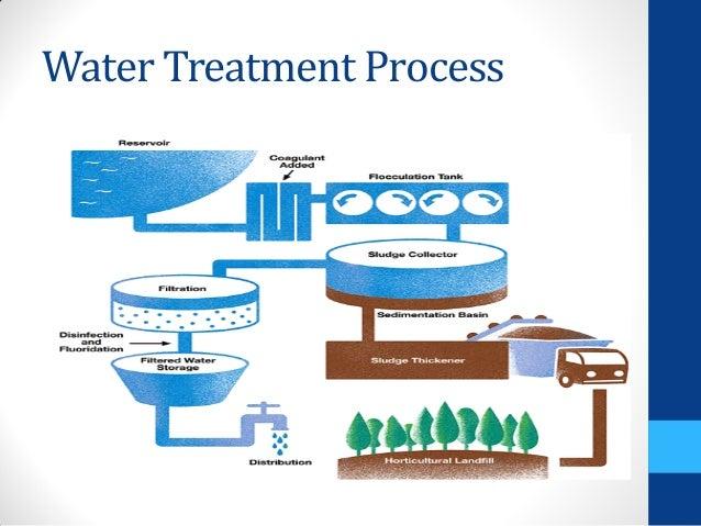 Natural Water Purification
