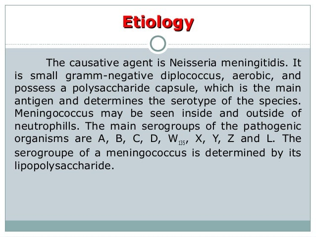 Meningococcal infection Slide 3
