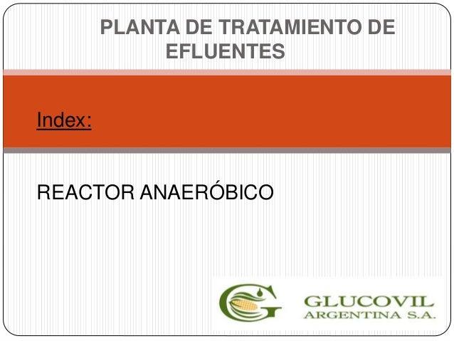 Index: REACTOR ANAERÓBICO PLANTA DE TRATAMIENTO DE EFLUENTES