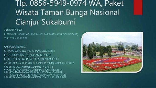 7 Tlp 0856 5949 0974 Wa Paket Wisata Taman Bunga Nasional