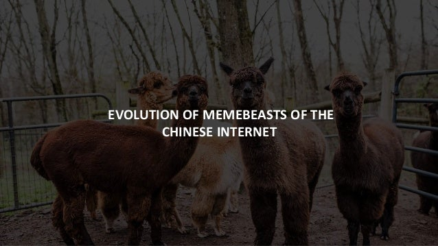 EVOLUTION OF MEMEBEASTS OF THE CHINESE INTERNET