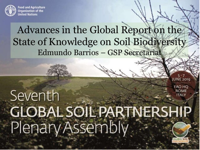Advances in the Global Report on the State of Knowledge on Soil Biodiversity Edmundo Barrios – GSP Secretariat