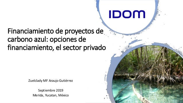 Financiamiento de proyectos de carbono azul: opciones de financiamiento, el sector privado Zuelclady MF Araujo Gutiérrez S...