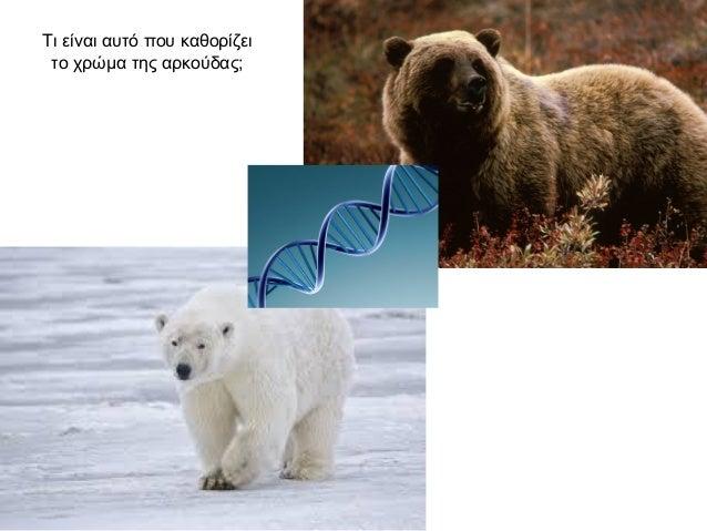7.1 Η εξέλιξη και οι μαρτυρίες της Slide 3