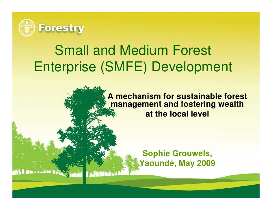 Small and Medium Forest Enterprise (SMFE) Development            A mechanism for sustainable forest            management ...