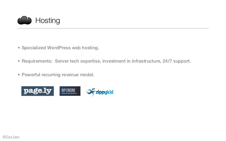 Hosting      • Specialized WordPress web hosting.      • Requirements: Server tech expertise, investment in infrastructure...