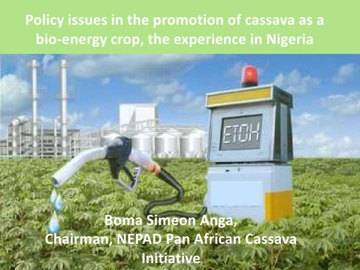 Policy issues in the promotion of cassava as abio-energy crop, the experience in Nigeria<br />Boma Simeon Anga, <br />Chai...