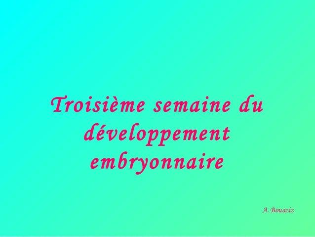 Troisième semaine du développement embryonnaire A. Bouaziz