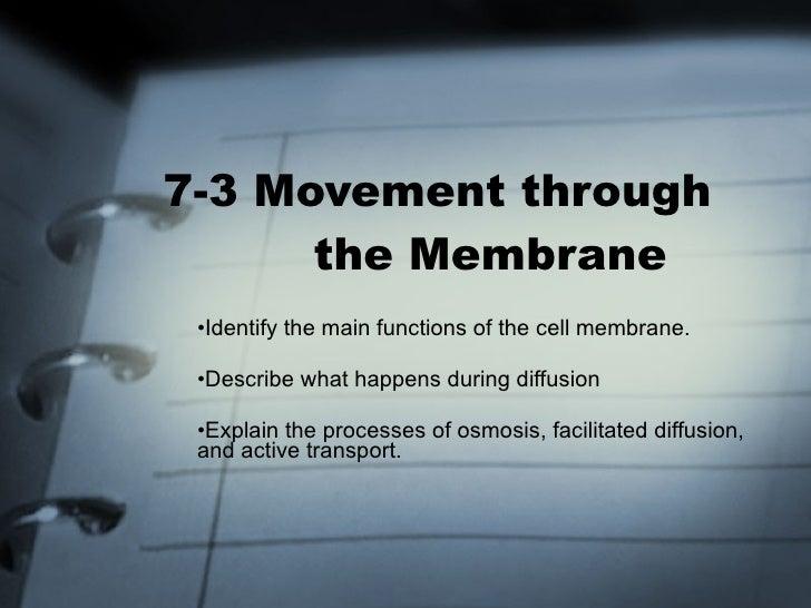 7-3 Movement through    the Membrane <ul><li>Identify the main functions of the cell membrane. </li></ul><ul><li>Describe ...