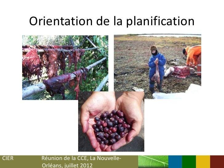Orientation de la planificationCIER     Réunion de la CCE, La Nouvelle-         Orléans, juillet 2012