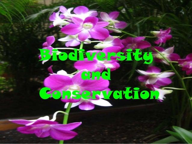 Biodiversity    andConservation