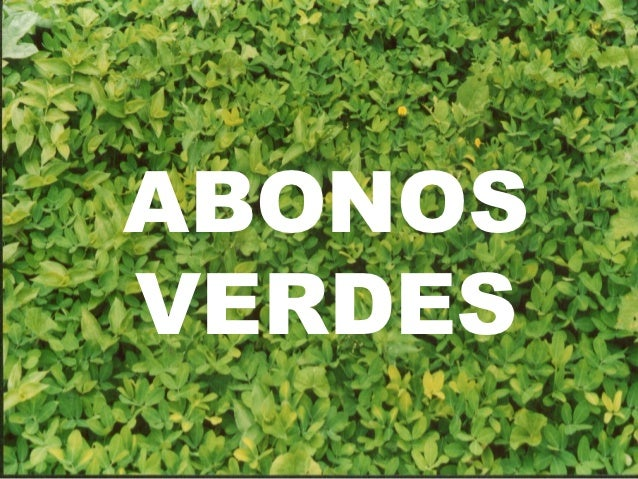 Image result for abono verde