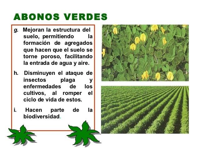 7. abonos-verdes-elaboración-uso-y-manejo-de-abonos-orgánicos