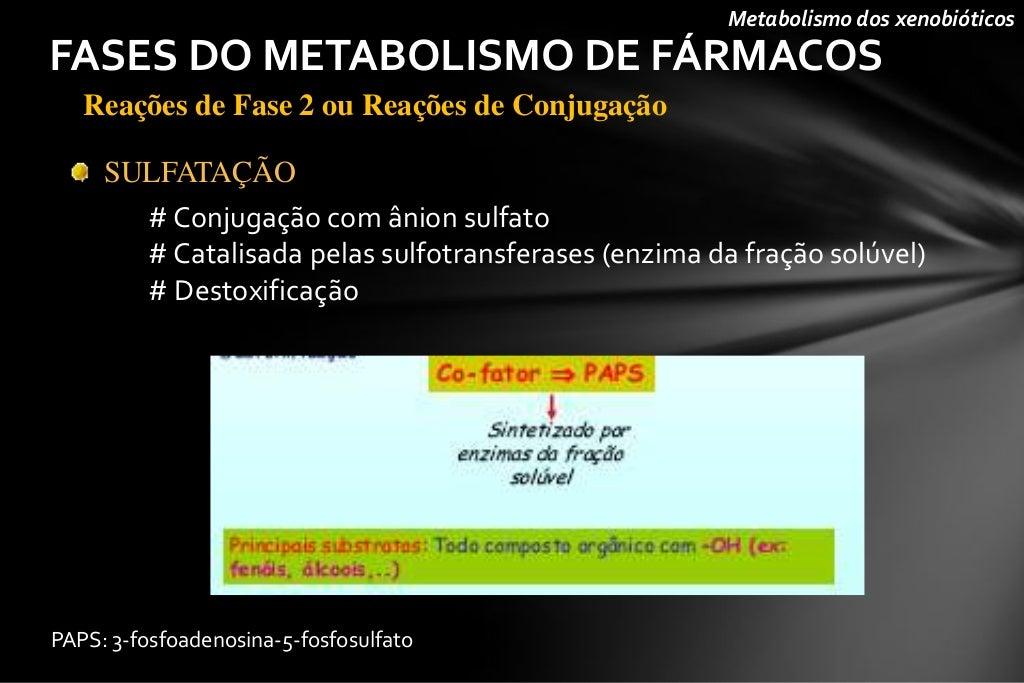 La guía secreta para Metabolismo