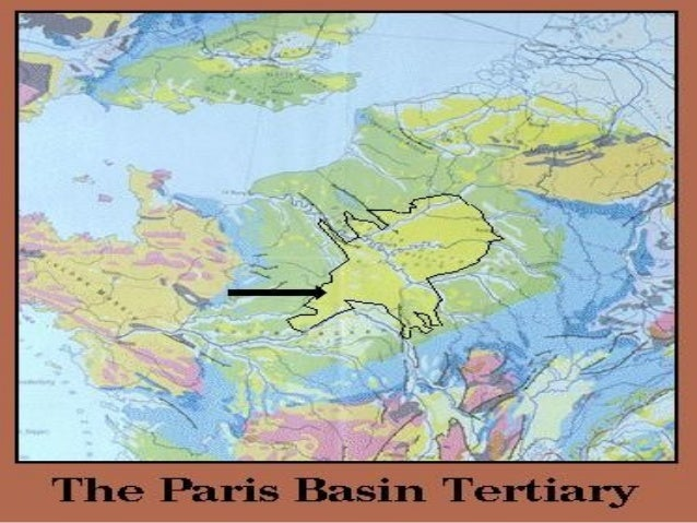 the paris basin tertiary activities Paris basin: - tertiary activities account for the development of tertiary activities in one non-irish region of your choice tourism  capital city - naturally draws.