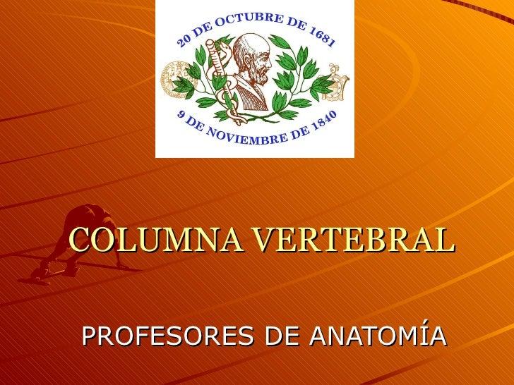 COLUMNA VERTEBRAL PROFESORES DE ANATOMÍA