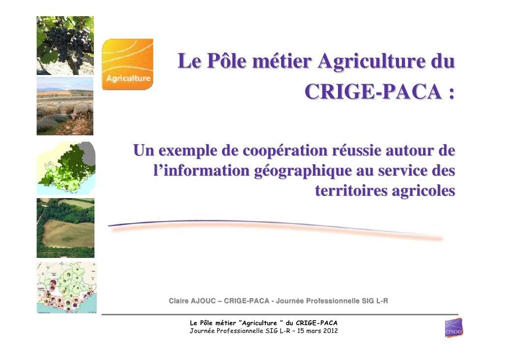Le Pôle métier Agriculture du                   CRIGE-PACA :Un exemple de coopération réussie autour de  l'information géo...