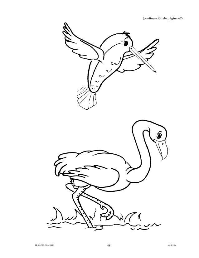 Bonito Niños Colorear Aves Páginas Viñeta - Páginas Para Colorear ...