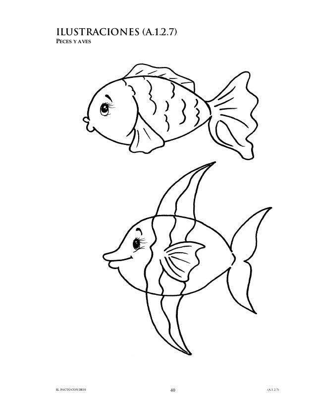 7. dios hizo los peces y las aves