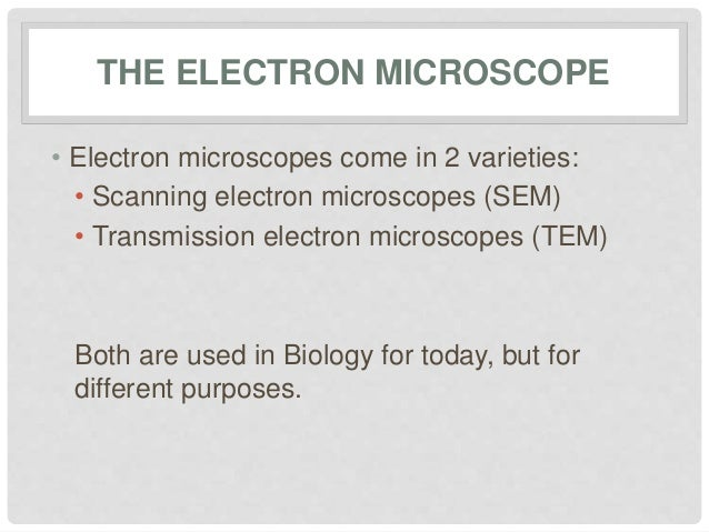 Electron microscopy 5 the electron microscope ccuart Image collections