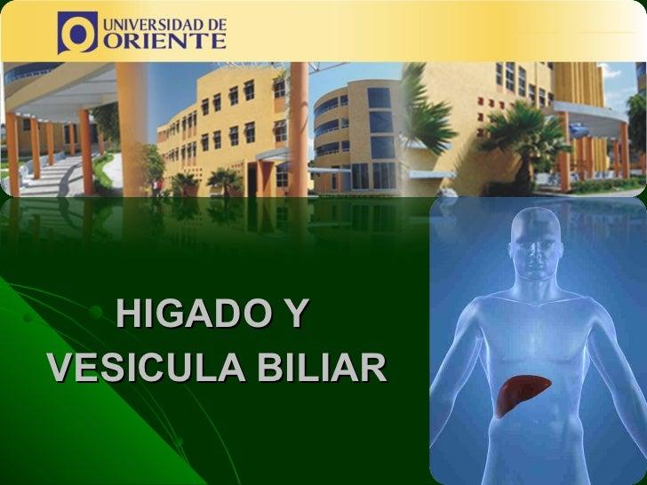 HIGADO Y  VESICULA BILIAR