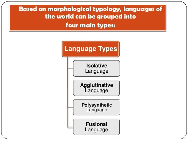 Morphological Typology Review - Types of languages in the world