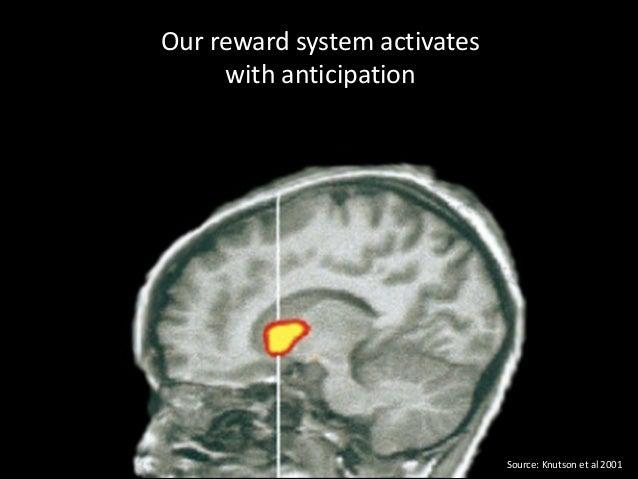 Our  reward  system  activates   with  anticipation  Source:  Knutson  et  al  2001
