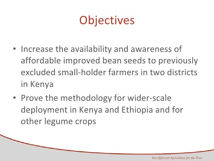 Objectives <ul><li>Increase the availability and awareness of affordable improved bean seeds to previously excluded small-...