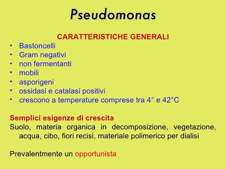 Pseudomonas <ul><li>CARATTERISTICHE GENERALI </li></ul><ul><li>Bastoncelli  </li></ul><ul><li>Gram negativi </li></ul><ul>...