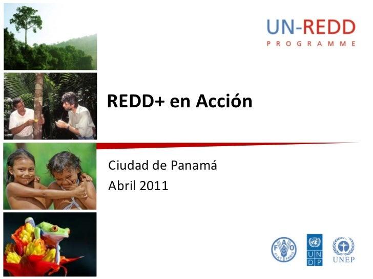 REDD+ en AcciónCiudad de PanamáAbril 2011