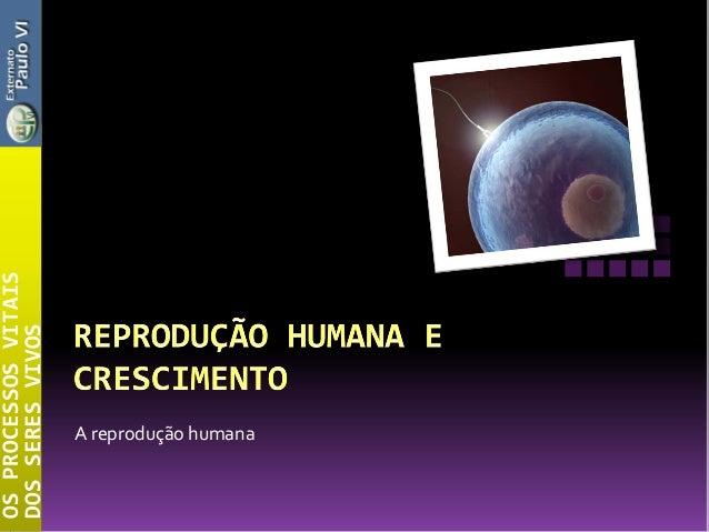 A reprodução humanaOSPROCESSOSVITAISDOSSERESVIVOS