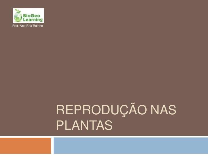 Prof. Ana Rita Rainho                        REPRODUÇÃO NAS                        PLANTAS