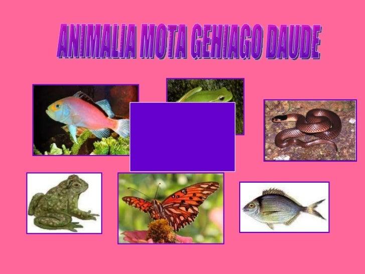 ANIMALIA MOTA GEHIAGO DAUDE