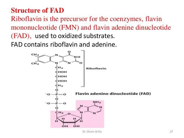 7 vitamins and cofactors