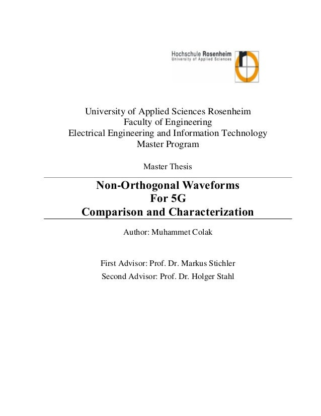 Fh Rosenheimmunity thesis report muhammet colak