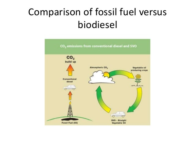 biodiesel as an alternative fuel Alternative diesel fuels regulation for biodiesel as the provisions of the alternative diesel fuel regulation as an emissions.