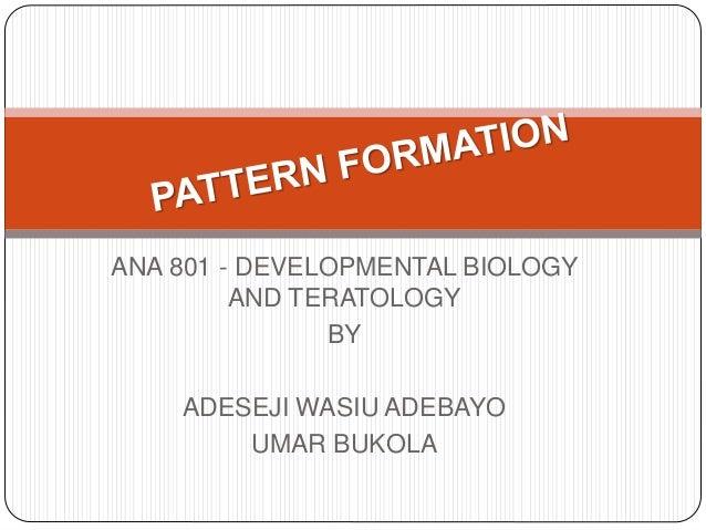ANA 801 - DEVELOPMENTAL BIOLOGY AND TERATOLOGY BY ADESEJI WASIU ADEBAYO UMAR BUKOLA