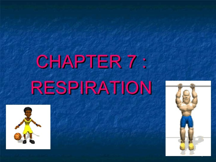 CHAPTER 7 :RESPIRATION              1