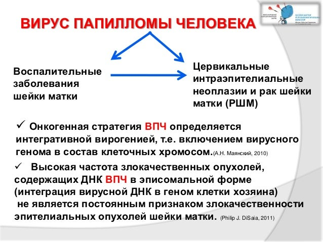 Как выявить впч 16 18 - Jks-k.ru