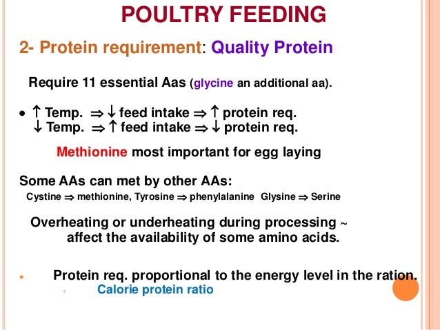 Feeding management of poultry
