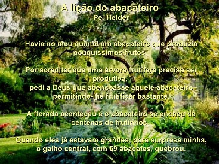 A lição do abacateiro  Pe. Helder  Havia no meu quintal um abacateiro que produzia pouquíssimos frutos.   Por acreditar ...