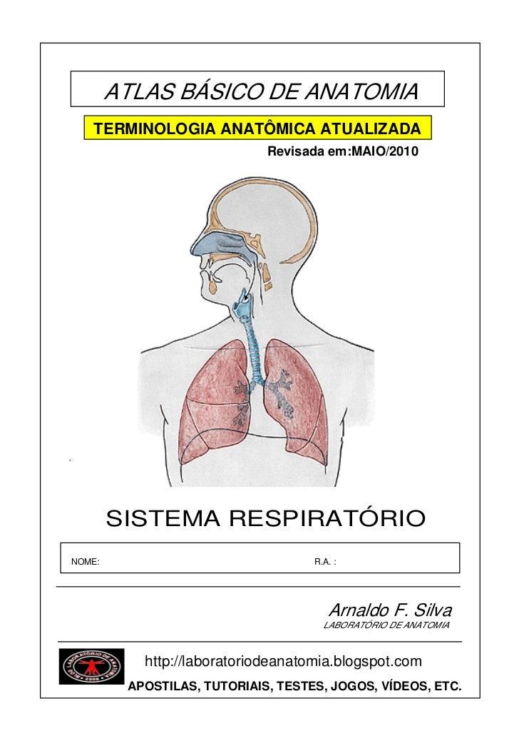 ATLAS BÁSICO DE ANATOMIA    TERMINOLOGIA ANATÔMICA ATUALIZADA                             Revisada em:MAIO/2010´        SI...