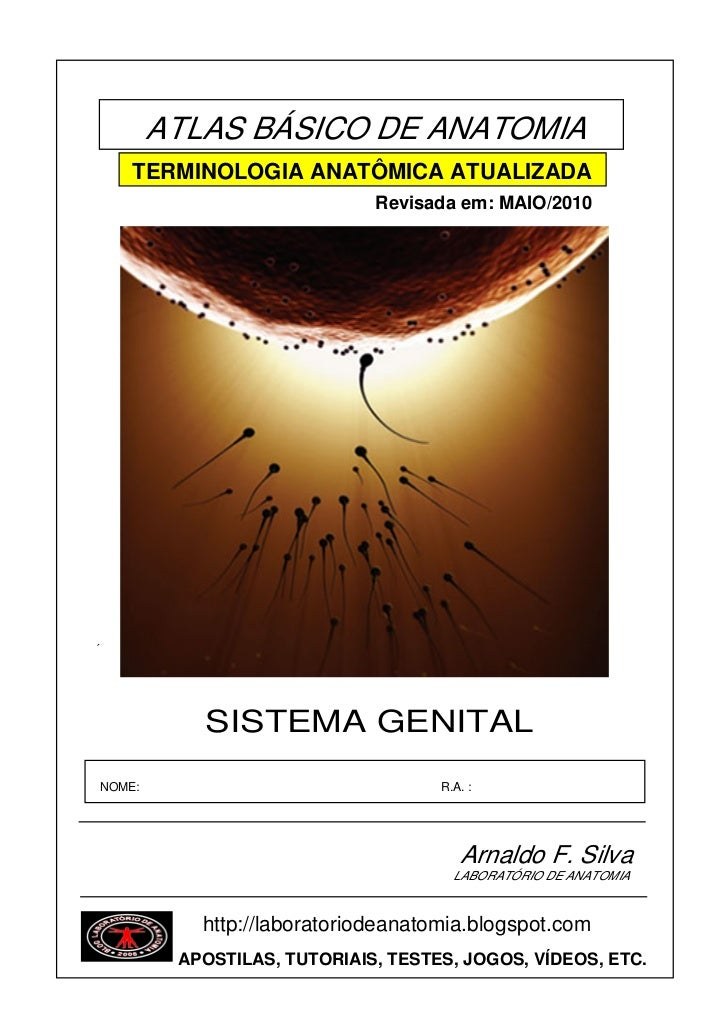 ATLAS BÁSICO DE ANATOMIA    TERMINOLOGIA ANATÔMICA ATUALIZADA                             Revisada em: MAIO/2010´         ...